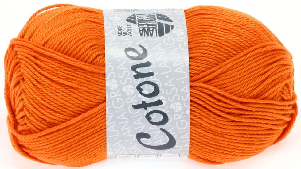 Cotone | 39 - Kürbis