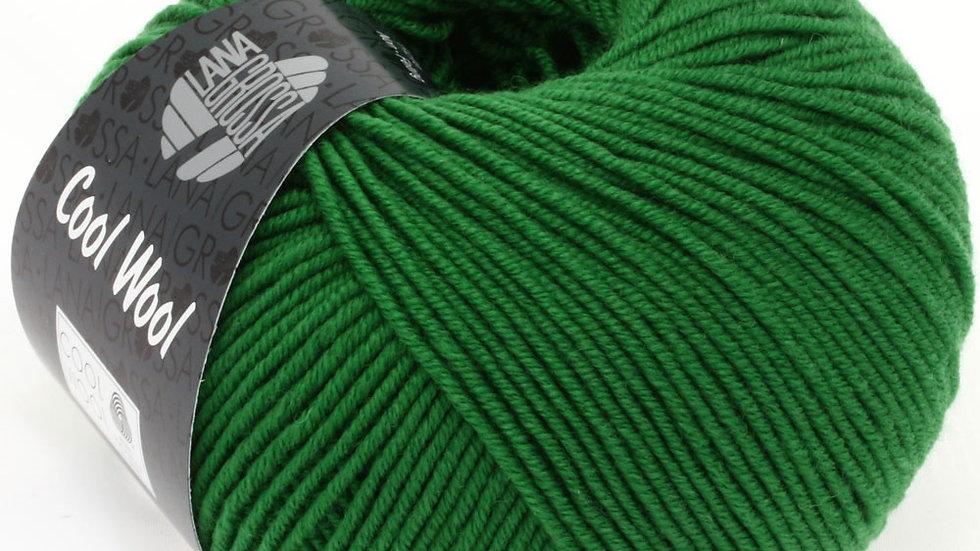 Cool Wool | 2017 - Grün
