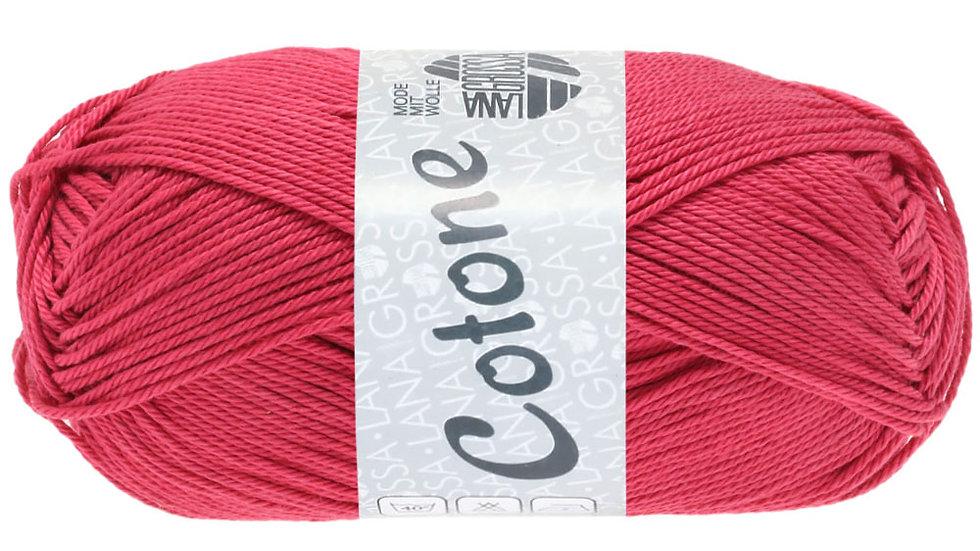Cotone   83 - Magnolie