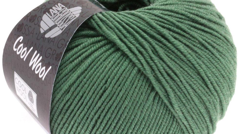 Cool Wool   2021 - Dunkles Graugrün
