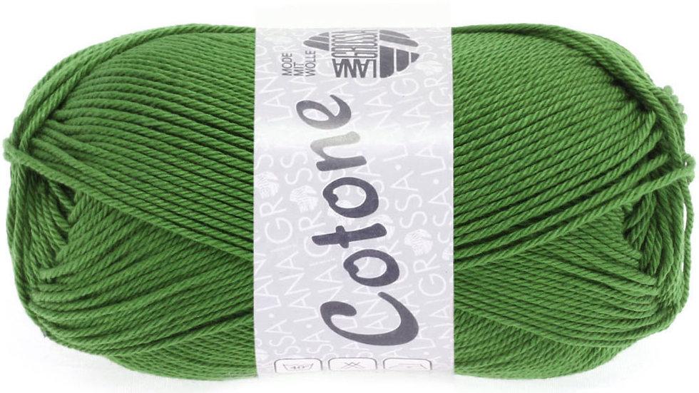 Cotone | 54 - Farngrün