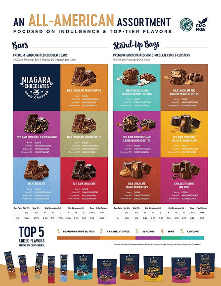 Niagara Sell Sheet 2 hi res.jpg