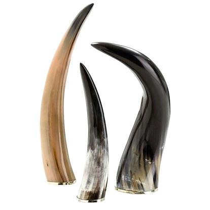 arteriors bernard horns sculpture, set/3 $355 perigold.com