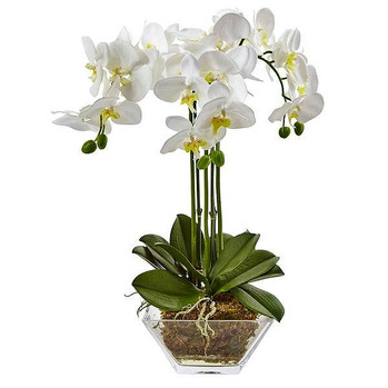 nearly natural triple phalaenopsis orchid in glass vase $74.99 nearlynatural.com