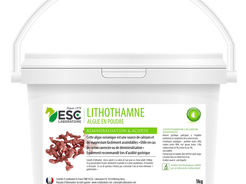 LITHOTHAMNE ESC Laboratoire