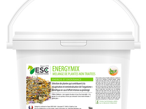 ENERGYMIX ESC Laboratoire