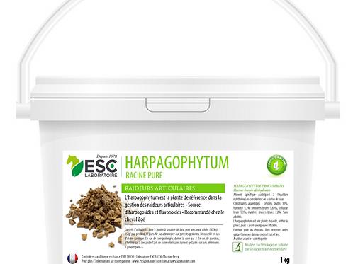 HARPAGOPHYTUM ESC Laboratoire