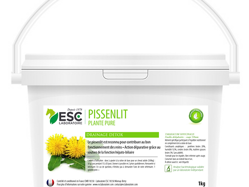 PISSENLIT ESC Laboratoire