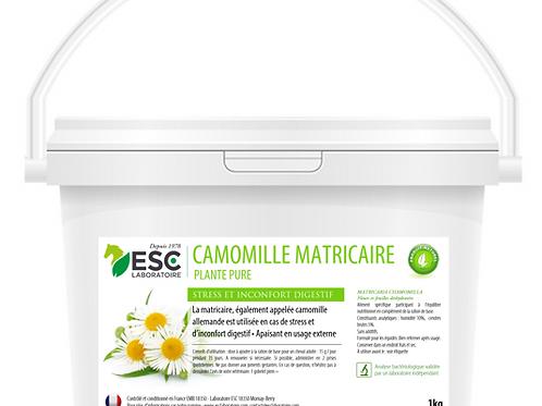 CAMOMILLE MATRICIAIRE ESC Laboratoire