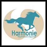 Logo HNE.png