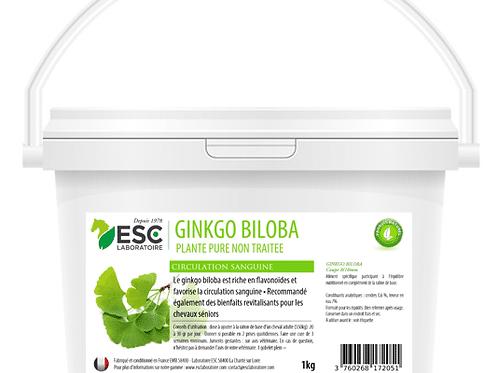 GINKGO BILOBA ESC Laboratoire