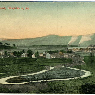 Shingle House & Palmer plant in the valley.