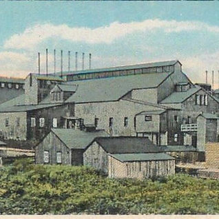 In 1898 the McCoy Window Glass