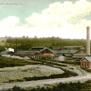 Brookvill plant