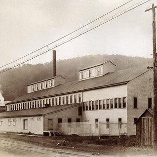 Rynoldsville Pa. plant in Jefferson County 1905.