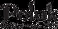 ERG guitars logo