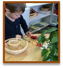 montessori science