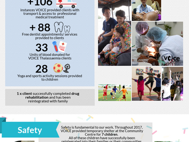 VOICE Annual Impact Report 2017