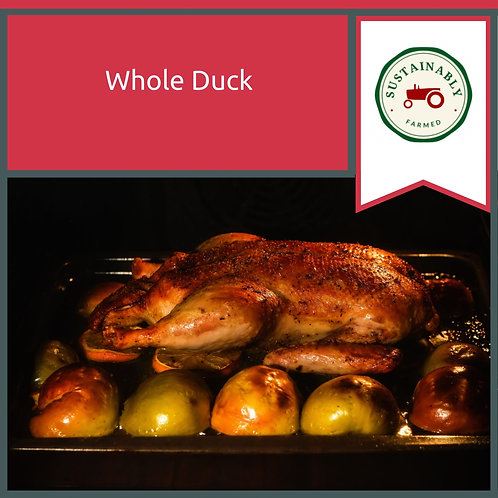 Whole Duck Min 2.4 Kg