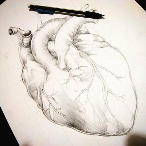 #humanheart #sketch #vesicapiscis #three