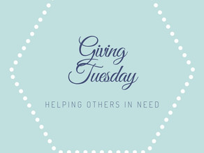 Giving Tuesday 2020 | Danielle Hardesty Photography