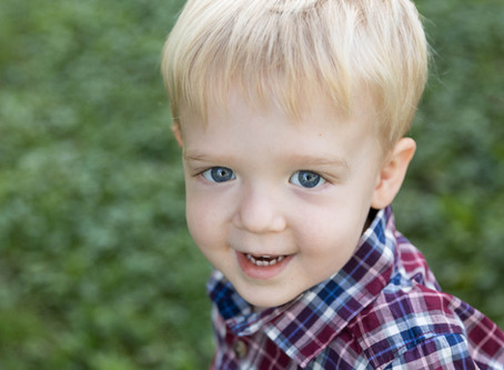 Family Photos with Toddlers \ Danielle Hardesty Photography