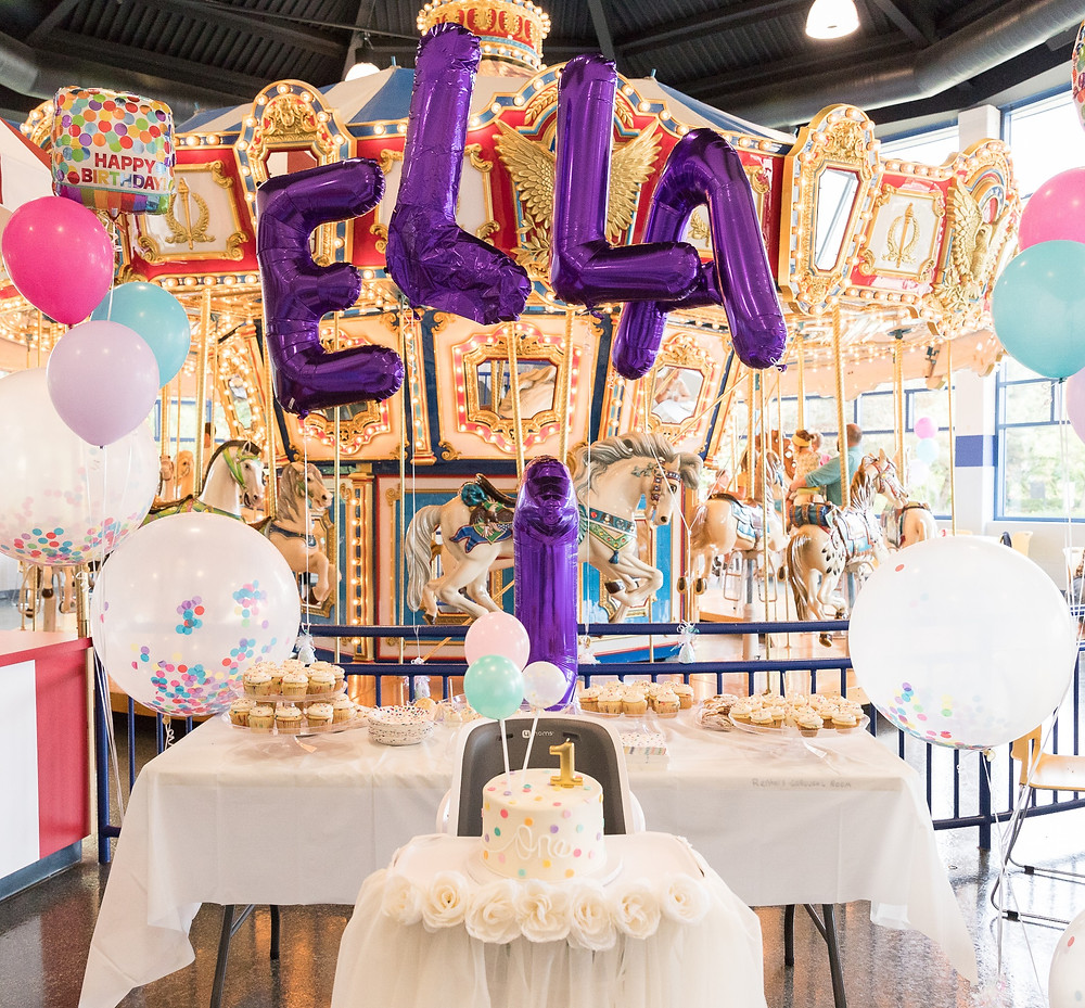 elk grove village park district carousel room first birthday party girl