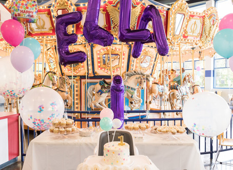 Elk Grove Village Carousel Room 1st Birthday Party/Danielle Hardesty Events