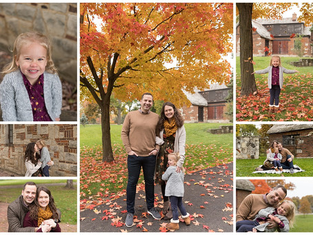 L Fall Family Session/Hinsdale, IL Family Photographer