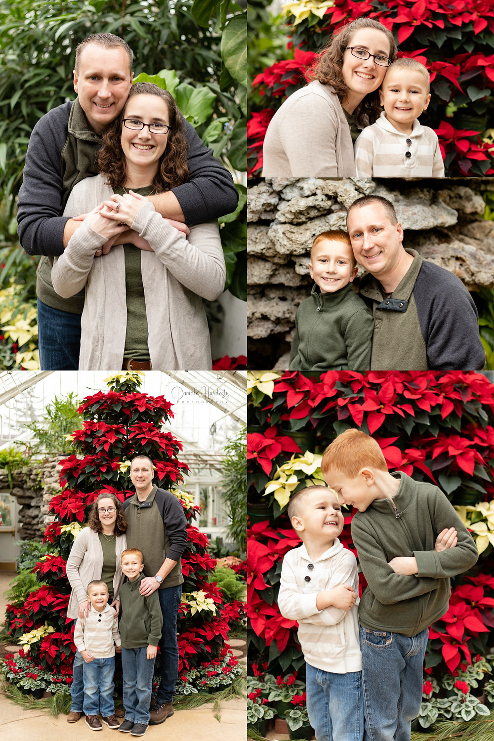 christmas family photos, brothers, family of four