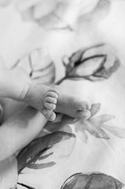 Danielle Hardesty Photography Newborn 27 (3).jpg