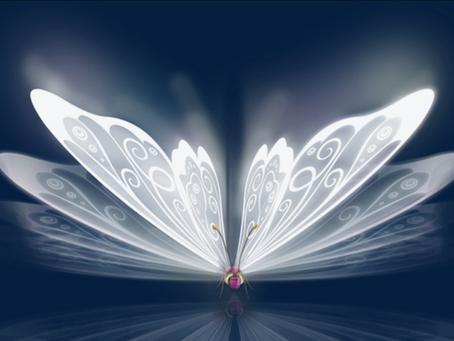 Cercle du Papillon