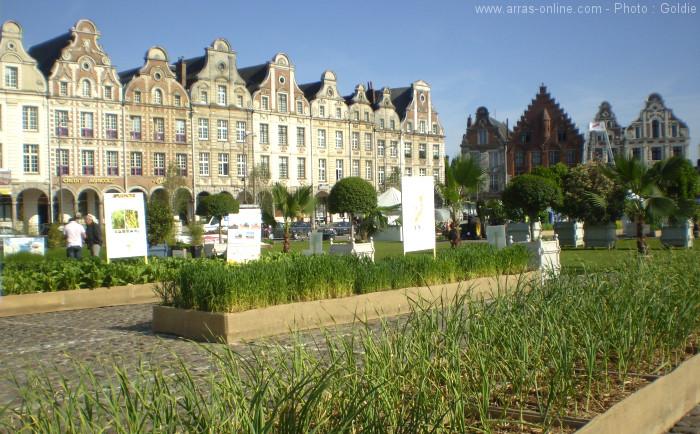 Place Nature à Arras