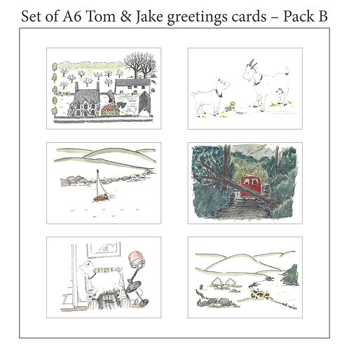 Tom & Jake A6 blank cards with envelopes - Pack B