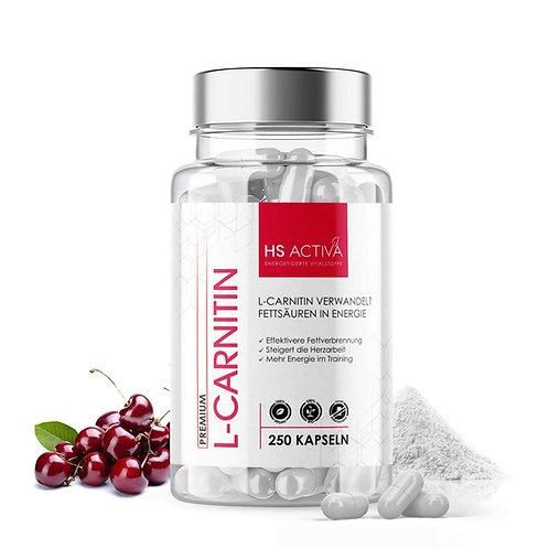 L Carnitin (250 Kapseln)