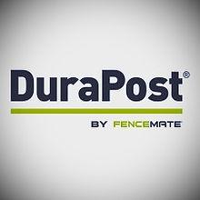 LogoDP_edited.jpg