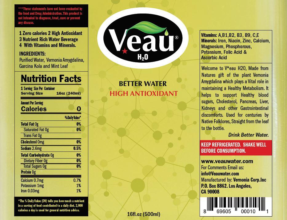 veau-green-label-snapshot