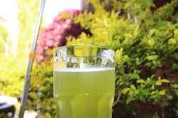 Fresh Glass of Healthy Veau Water 2