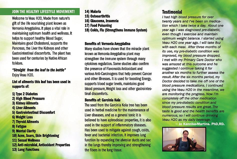 Veau-Brochure-Page-1.jpg