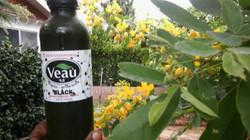 Veau Water - Nature Health Benefits