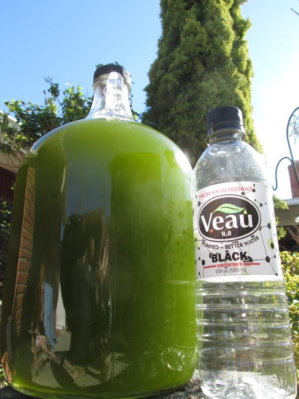 16oz Makes 1 Gallon Veau