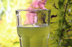 Fresh Glass of Healthy Veau Water