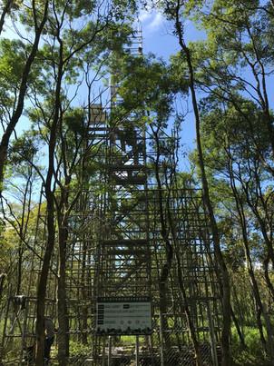 DNDF flux tower.jpg
