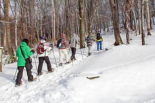 Las raquetas de nieve son un legado de pueblos ancestrales que nos permitirán, sin tener conocimiento técnico alguno.
