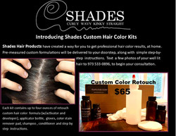 Shades Home Color Kit