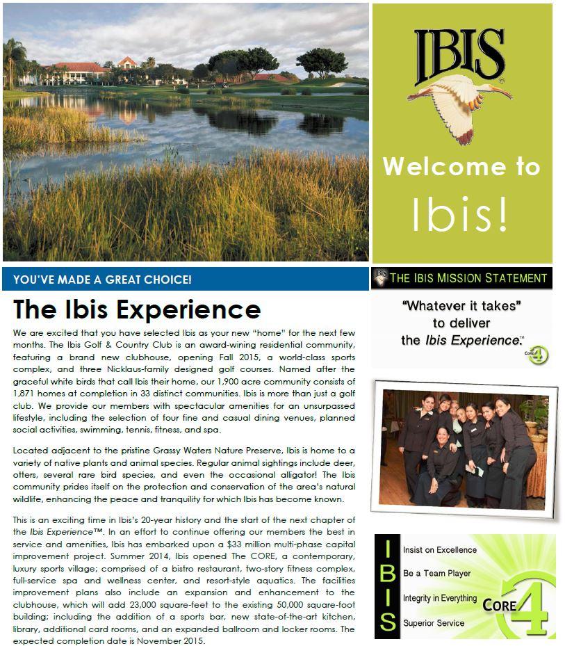 Ibis 3a.JPG