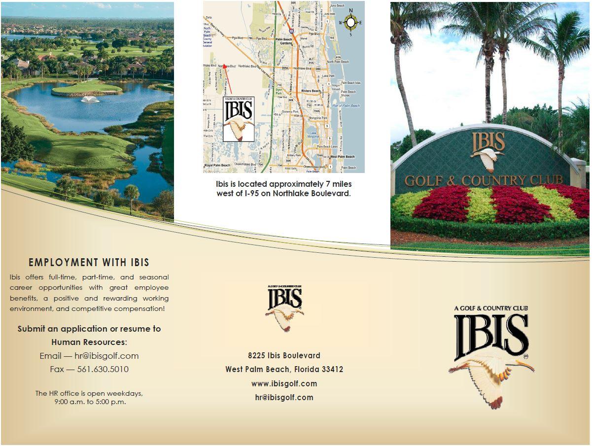 Ibis 2b.JPG