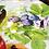 Thumbnail: Chemin de Table DEMETRA - Tessitura Toscana Telerie