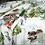 Thumbnail: FUNES - IZYLINENS  Coton percale - La Girafe Bleue et Tessitura Toscana Telerie