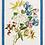 Thumbnail: Torchon IBISCO Verde Lin - Tessitura Toscana Telerie et La Girafe Bleue